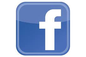 http://falchibaiso.myblog.it/wp-content/uploads/sites/294273/2013/11/facebioo.jpg